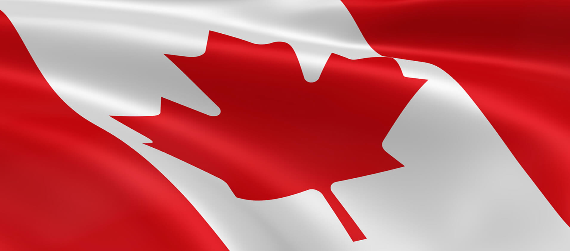 <a href='about'> A 100% Canadian Solution for Canadian Accountants & Bookkeepers</a>